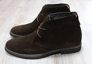 Зимние замшевые ботинки Hilfiger коричневого цвета
