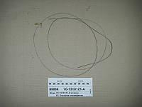 МТЗ 701310121А  Шнур шторки (пр-во МТЗ)