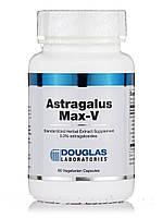 Астрагал Макс-В, Astragalus Max-V, 60 Вегетарианских капсул, Douglas Laboratories, , фото 1
