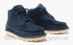 Мужские UGG David Beckham Boots Blue