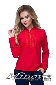 Блузы, рубашки норма