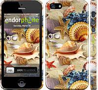 Накладка для iPhone 5/5S пластик Endorphone морские ракушки глянец (2244c-21-308)
