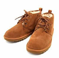Мужские ботинки UGG Neumel Chestnut, фото 1