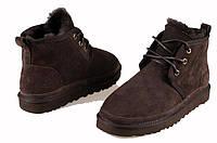Мужские ботинки UGG Neumel Brown, фото 1