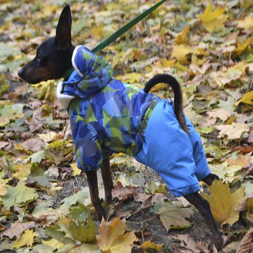 Костюм Pet Fashion Винтаж S (28см) для собак
