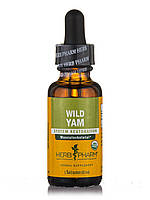Wild Yam, 1 fl. oz (30 ml)