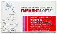 "Гамавит Форте, 10 мл, ЗАО ""Микро-плюс"" (архив)"