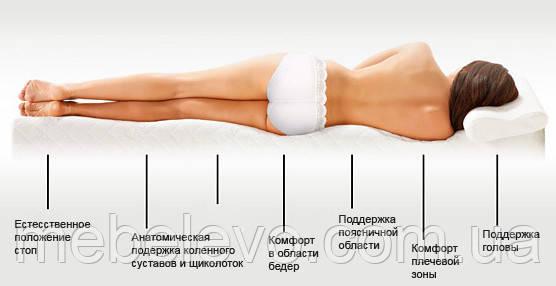 Зоны ортопедического матраса