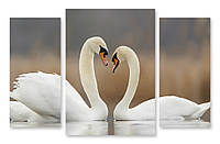 Модульная картина два белых лебедя