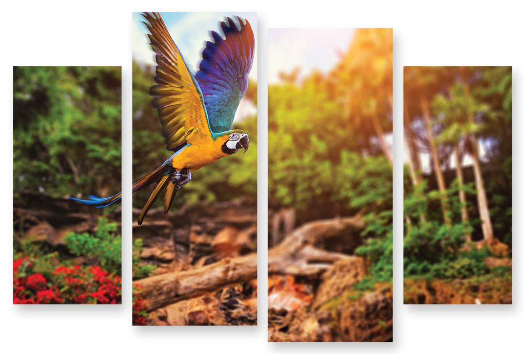 Модульная картина яркая птица