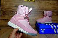 Зимние сапоги Adidas Terrex спортивные розовые