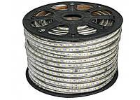 Светодиодная лента цветная 220V-5050-60-led/m, IP68, RGB