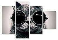 Модульная картина кот в очках