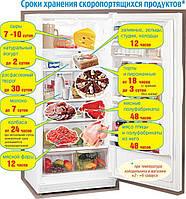 Роль холодильного оборудования в соблюдении правил товарного соседства