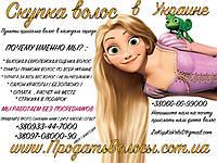 Цех пастижный париков дорого купит волосы Днепр . Продать волосы на прямую производителю париков в Украине это выгодно , дорогая скупка волос по всей Украине . Куплю волосы Днепр . Продать волосы в Днепропетровске