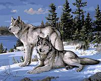 Картины по номерам Волки на снегу (NB236) 40 х 50 см (цветной холст) DIY Babylon Premium