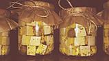 Закваска+фермент для сиру ФЕТА, фото 5