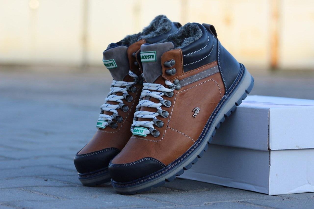 Ботинки мужские Lacoste (коричневые), ТОП-реплика