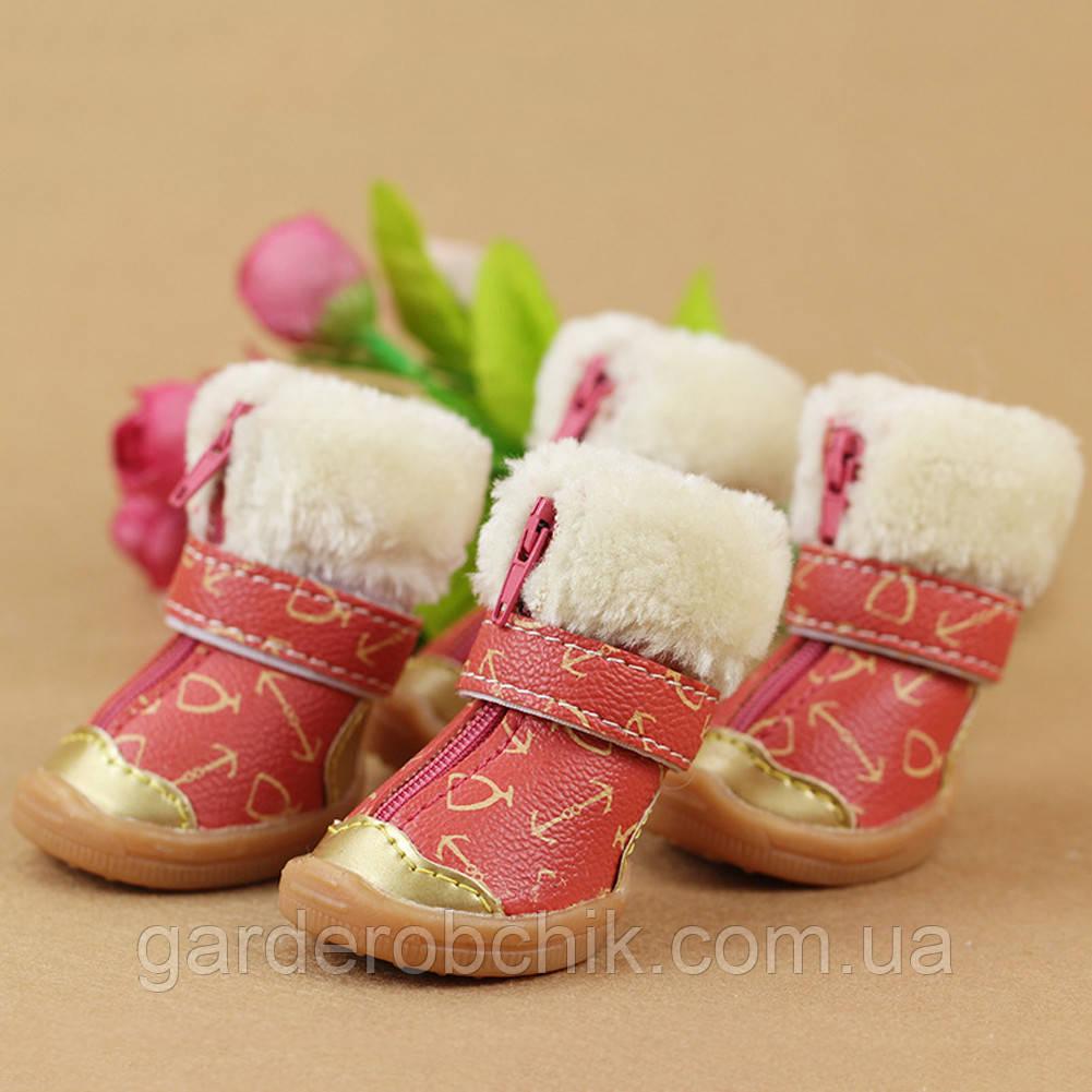 """Ботинки, сапоги """"Очаровашки"""" для собак. Обувь для собак"""