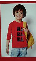 Реглан трикотажный  для мальчика,  размер 98/104 Lupilu, Л-717