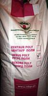 Буряк кормовий Урсус Полі 20кг (85грн/кг)