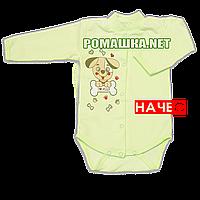 Детский боди с длинным  рукавом р. 74 с начесом ткань ФУТЕР (байка) 100% хлопок ТМ Алекс 3188 Зеленый Б