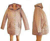 Куртки осенне-весенние, подойдут беременным.