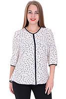 Блуза Софта 01 Белая