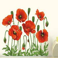 Наклейка на стену, виниловые наклейки, стикеры красные маки цветы (лист50*70см)