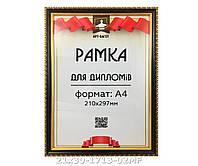 Фоторамка ,пластиковая, А4, 21х30, рамка , для фото, дипломов, сертификатов, грамот, картин, 1713-02
