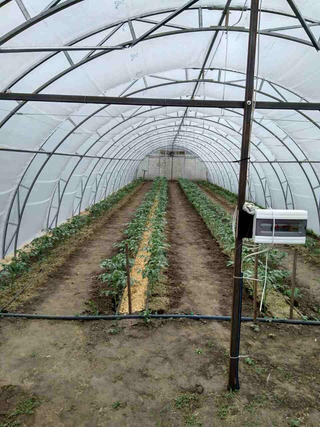 фермерские теплицы полтава