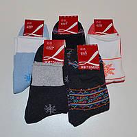 Женские махровые носки Еліт Житомир - 10.50 грн./пара (ассорти), фото 1