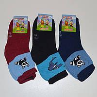 Детские махровые носки Еліт ЖИТОМИР - 10.00 грн./пара (18-20, ассорти), фото 1