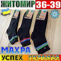 Носки подростковые-детские махровые Успех Житомир Украина размер 36-39 НДЗ-07185