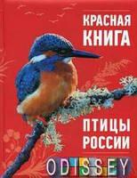Красная книга. Птицы России. Оксана Скалдина. Эксмо