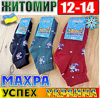 Носки  детские махровые Успех Житомир Украина размер 12-14 НДЗ-07189