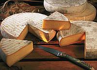 Закваска+фермент для сыра СЕН-НЕКТЕР, фото 1
