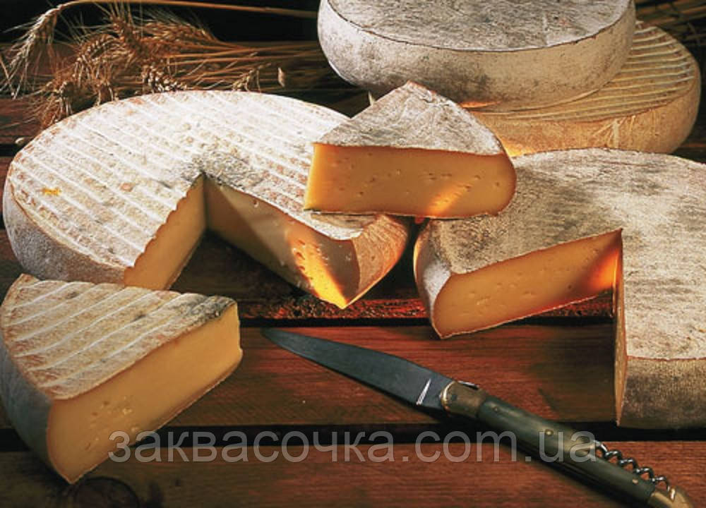 Закваска+фермент для сыра СЕН-НЕКТЕР