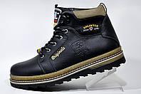 Кожаные ботинки Splinter, с мехом (Black)