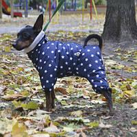 Комбинезон Pet Fashion  Холс S( 28см)  для собак