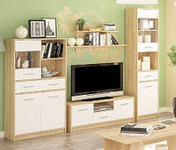 Набор мебели для гостиной №1 Типс (Мебель-Сервис)