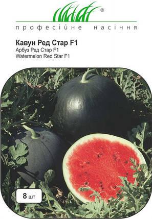 Семена арбуза Ред Стар F1 8 шт, Nunhems Zaden, фото 2
