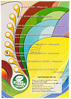 Бумага офисная Super Mix 80 г/м 250 листов 10 цветов по 25 листов IQ