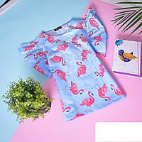 Коттоновая блузочка с крылышками