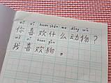 Тетрадь для написания иероглифов. Клетка 14 мм с пунктиром и расширенным полем для пиньинь. 2016 клеток, фото 4