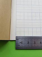 Тетрадь для написания иероглифов. Клетка 14 мм с пунктиром и расширенным полем для пиньинь. 1008 клеток