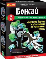 Японский сад кристаллов (бонсай)