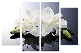 Модульна картина біла квітка