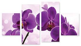 Модульна картина фіолетова орхідея