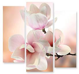 Модульна картина ніжно рожеві квіти